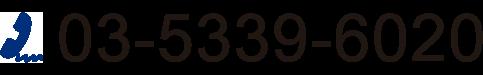 03-5339-6020